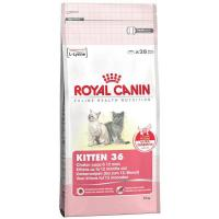 Royal Canin Kitten 36 - 10 kg